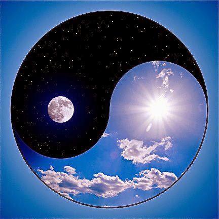 ying yang 457