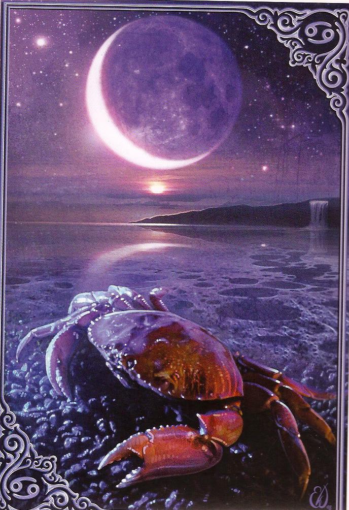 Cancer ınnew moon