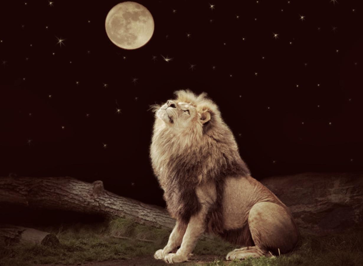 aslanda dolunay