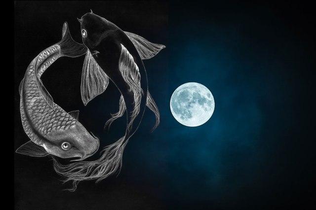 balıkta dolunay2