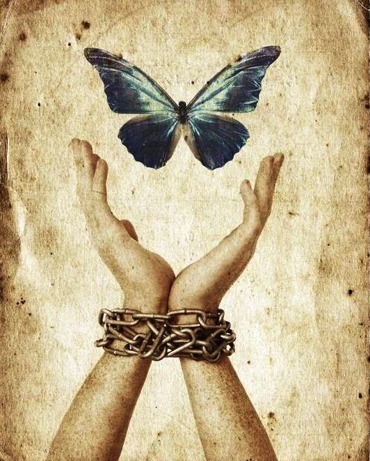 terazi ve özgürlük