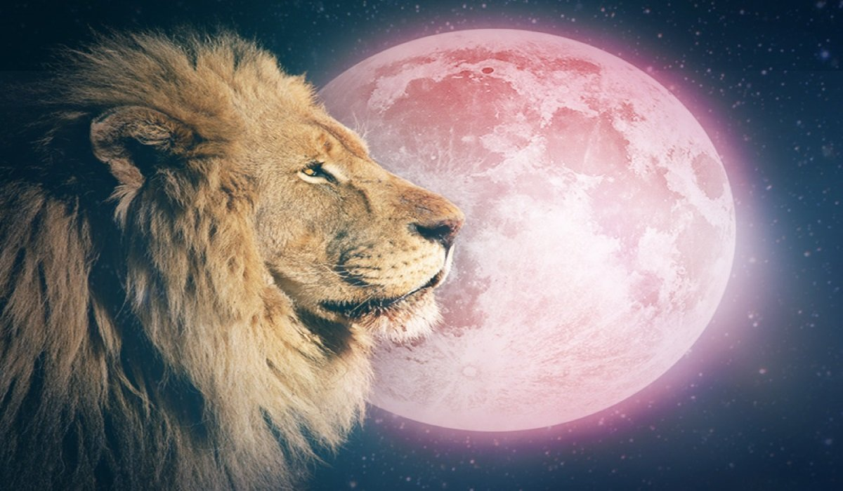 Full-Moon-in-Leo-on-February-9-2020-Embrace-the-Path-You-were-Meant-to-Travel